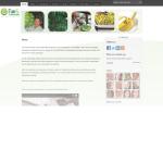Website FSAS